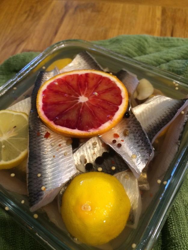 herring and citrus